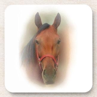 ¡Sistema de 6 prácticos de costa del caballo Posavasos De Bebidas