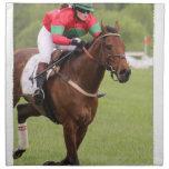 Sistema de la carrera de caballos de cuatro servilleta