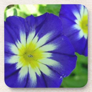 Sistema de la flor de la correhuela de prácticos d posavaso