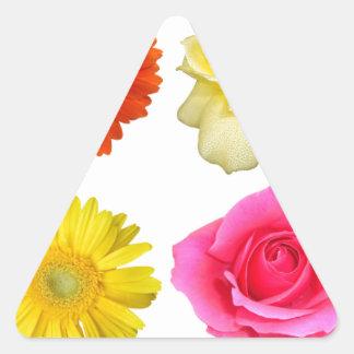 sistema de la flor pegatina triangular