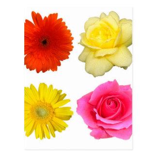 sistema de la flor postal