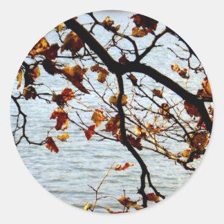 Sistema de la foto del árbol y del océano pegatina redonda