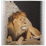 Sistema de la foto del león de cuatro servilletas
