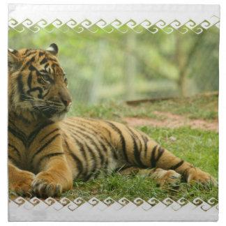 Sistema de reclinación del tigre de cuatro servill