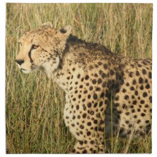 Sistema de vagabundeo del guepardo de cuatro servilletas