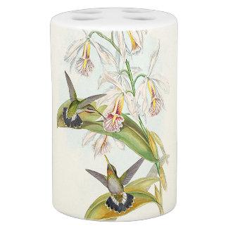 Sistema del baño de los colibríes de Gould Sets De Baño