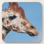 Sistema del perfil de la jirafa de seis prácticos  posavasos de bebidas