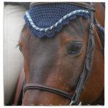 Sistema del perfil del caballo de cuatro servillet