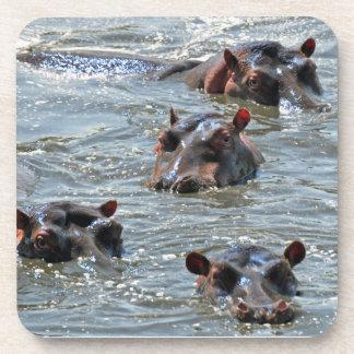 Sistema del práctico de costa del hipopótamo posavasos