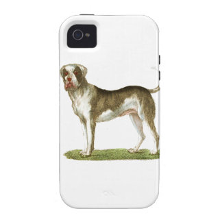 sistema del regalo del arte del perro vibe iPhone 4 fundas