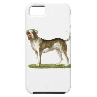 sistema del regalo del arte del perro iPhone 5 protector