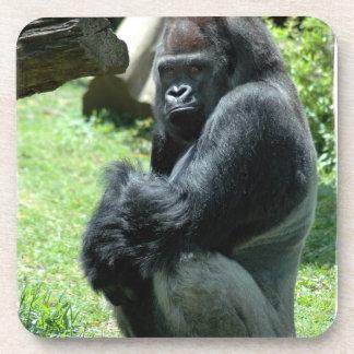Sistema del resplandor del gorila de seis práctico posavasos de bebida