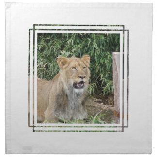 Sistema del rugido del león de cuatro servilletas