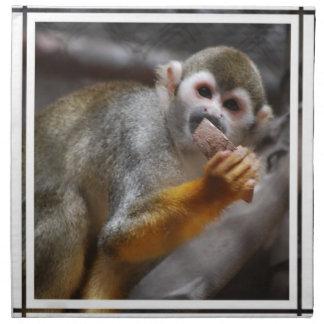 Sistema hambriento del mono de ardilla de cuatro servilletas