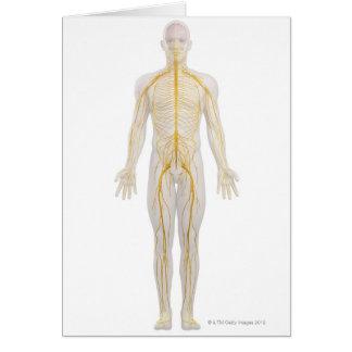 Sistema nervioso humano 2 tarjeta de felicitación