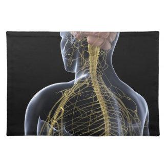 Sistema nervioso humano mantel individual