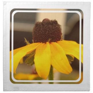 Sistema observado negro del flor de Susan de cuatr Servilleta De Papel