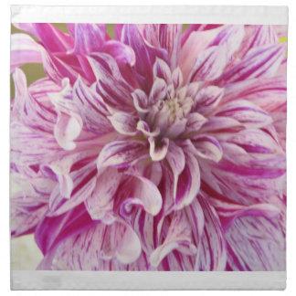 Sistema rosado del flor de la dalia de cuatro servilleta de papel