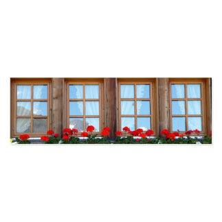 Sistema suizo de la señal de la foto de la ventana tarjetas de visita mini