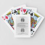 Sistema vascular del cerebro baraja cartas de poker