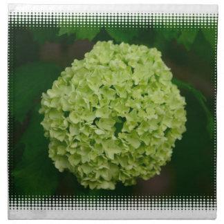 Sistema verde del Hydrangea de cuatro servilletas