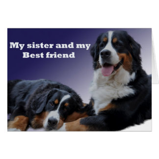 sister bernese happy birthday best wishes love greeting cards