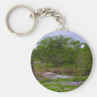 Sister Creek in Spring Basic Round Button Keychain