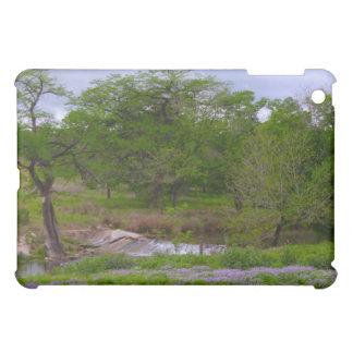Sister Creek in Spring iPad Mini Cover