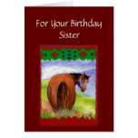 Sister Funny Birthday Wishes Horses  Diet Cake Greeting Cards