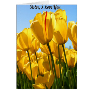 Sister, I Love You Card