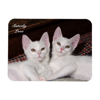 Sisterly Love Twins Cat Magnet