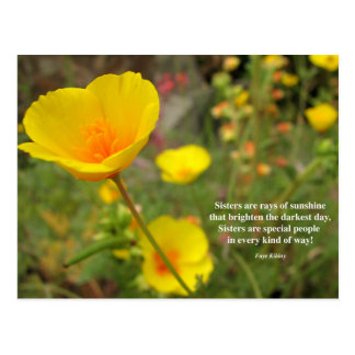 Sisters Are Special Poem Yellow Poppy Postcard