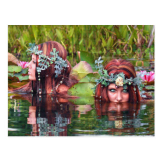 Sisters Collectors Postcard