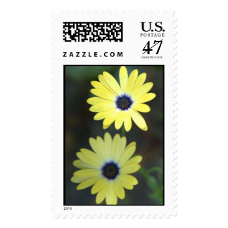 Sisters In The Garden Postage - matching card!