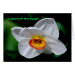 Sisters of the heart card