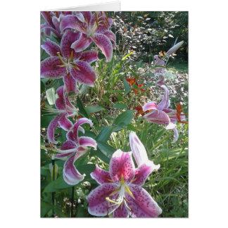 Sister's Stargazer Lilies, Sentimental Card