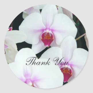 Sisters - Thank You Round Sticker