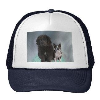 Sisters Trucker Hat