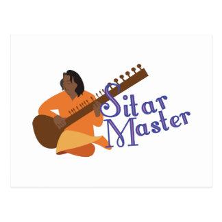 Sitar Master Postcard