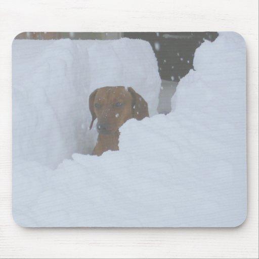 Sitiado por la nieve alfombrilla de raton
