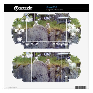 Siting and standing Sheep Decals For PSP