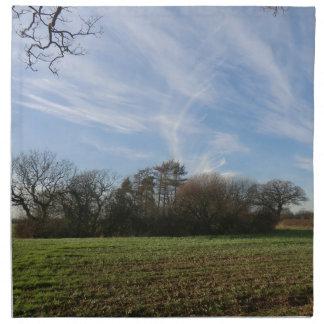 Sitio de la batalla de Shrewsbury Servilletas De Papel
