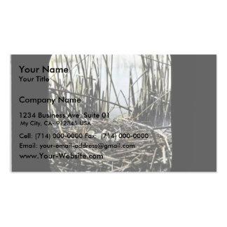 Sitio de la jerarquía en el pantano de Klamath Tarjetas De Visita