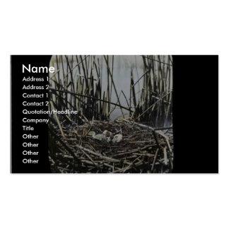 Sitio de la jerarquía en el pantano de Klamath Plantilla De Tarjeta De Visita