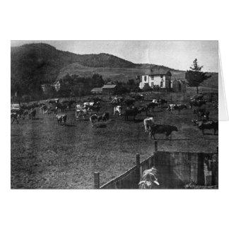 Sitio de Parnassus, 1892 - tarjeta de nota