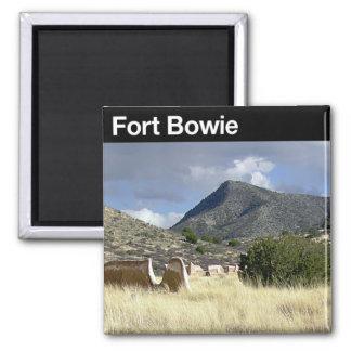 Sitio histórico nacional de Bowie del fuerte Iman De Nevera