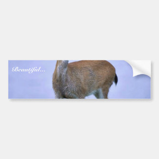 Sitka Black Tailed Deer Bumper Stickers