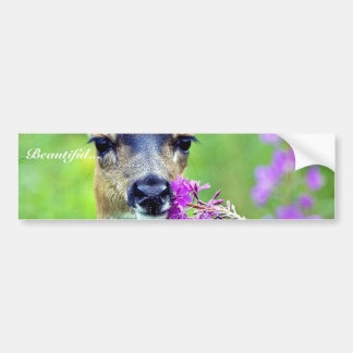 Sitka Black-tailed Deer with Fireweed Bumper Sticker