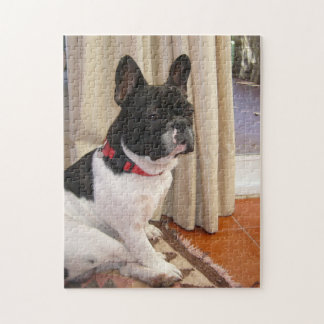 sitting 3 french bulldog.png jigsaw puzzles