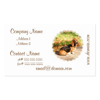 Sitting Basset Hound  Business Cards